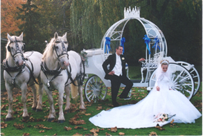 Cinderella Horse Drawn Wedding Carriage