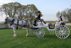 Horse Drawn Wedding Carriage LI